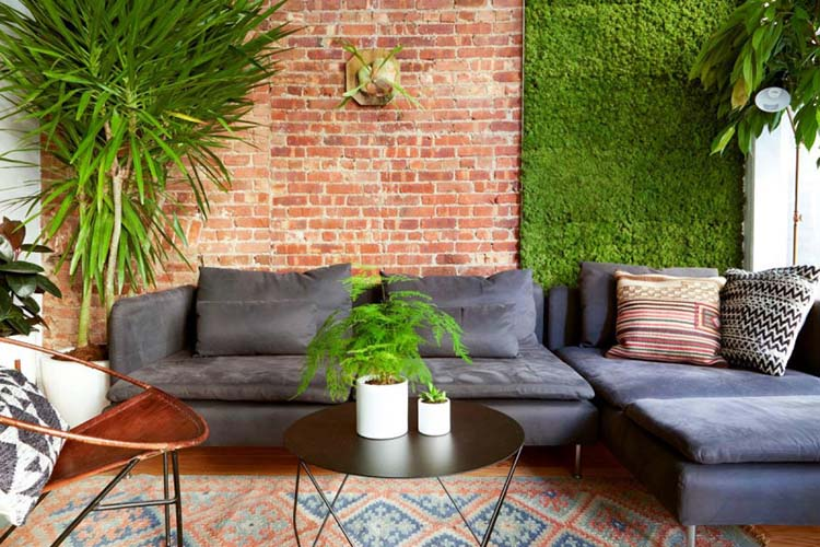 Living Walls: Painting Ideas